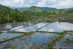 Ein gigantisches Terrassensystem, bei dem allein die Bewässerung ein Wunder ist