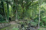 Heiliger Baum und heilige Quelle bei Sanda