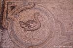 """Wüstenschloss """"Qasr Al Hallabat"""", Mosaikboden im Palast"""