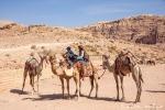 Touristentaxis - ein gutes Geschäft