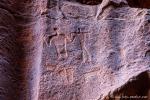 Betende Füße, Steinbock, Wadi Rum