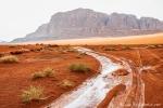 Regen im Wadi Rum