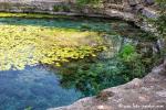 Cenote Dzibilchaltun