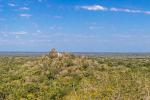Calakmul befindet sich mitten im Dschungel