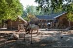 Dorfleben in Myanmar