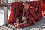 Junger Mönch mit seiner Katze im Shwe yan pyay Kloster