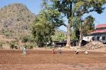Feldarbeit in Tha Kaung