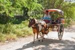 Pferdetrishaw in Inwa