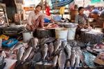 Reichhaltiges Fischangebot - Markt in Mandalay