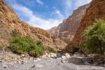 Wadi Muaydin