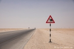 Wo sollen die herkommen? Wüste Rub al-Khali