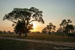 Morgenstimmung auf der Fazenda Santa Tereza
