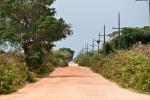 Unterwegs auf der Transpantaneira, der einzigen Straße im Pantanal.