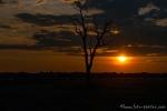 Sonnenuntergang über dem Schwemmland