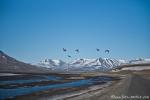 Am Isfjord bei Longyearbyen