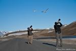Uwe und Christian versuchen sich an Flugbildern der Seeschwalben