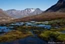 Hochmoor in den Bergen von Longyearbyen