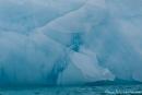 Das Treibeis schimmert azurblau