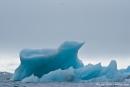 Der Eisberg sieht aus wie ein Vogel