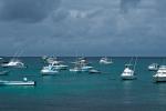 Unzählige Yachten im azurblauen Wasser - das ist Galapagos