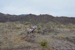 Weiter geht die Wanderung zum nächsten Vulkan