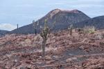 Vulkankegel des