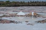 In der Lagune wird Salz gewonnen - Santa Cruz