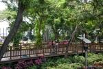 Dank tropischem Klimas gedeiht überall üppiges Grün - Guayaquil