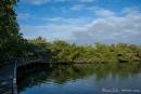"""Lagune """"Las Ninfas"""" in Santa Cruz"""