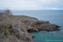 Blick vom Fregattvogelfelsen - San Cristobal