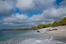 Traumhafter Strand - den wir nur mit den Seelöwen teilen müssen