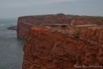 Rote Sandsteinfelsen prägen das Bild der Steilküste auf der Insel Helgoland