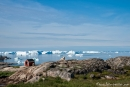 Blick in die Diskobucht - Ilulissat