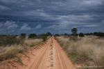Botswana - Kgalagadi TP - Mabuasehube Section