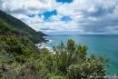 Ausblick vom Cape Patton Lookout - Great Ocean Road