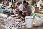 Fischer verkaufen ihren Fang