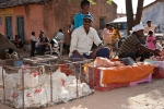 Geflügelhändler