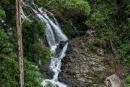 Einer der vielen Wasserfälle im Dorrigo NP