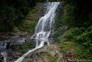 An den Tristania Falls im Dorrigo National Park