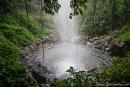 Hinter dem Crystal Shower Fall kann man entlang laufen - Dorrigo National Park