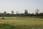 Landwirtschaft prägt das Land