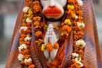 Hindu-Gottheit Hanuman, der Affenkönig - Amritsar