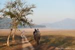 Auf dem Rücken eines Elefanten sieht die Welt noch einmal ganz anders aus - Corbett National Park