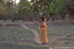 Auf dem Heimweg - alte Frau mit Holz und Ziegen
