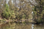 Im Park - Kanha National Park