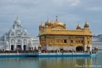 Auf der Mitte des Sees steht der Goldene Tempel, Hauptheiligtum der Anlage - Goldener Tempel, Amritsar