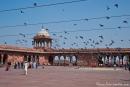 Innenhof der Jami Masjid - Delhi