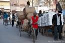 Händler transportieren ihre Waren durch die Altstadt von Delhi