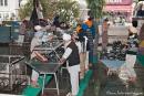Spülküche - Goldener Tempel, Amritsar