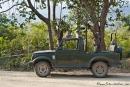 Von Affen gekidnappt - Gypsy-Jeep für die Safari im Corbett National Park